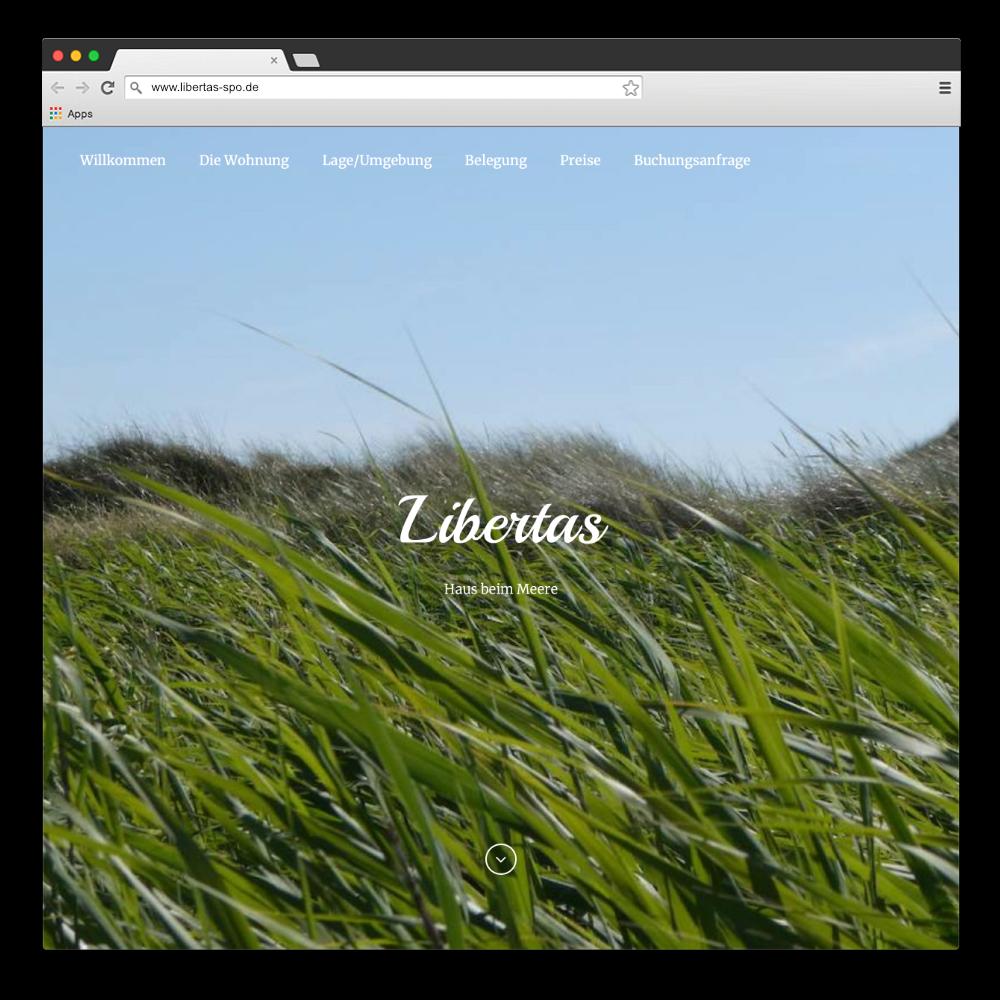 Abbildung Website www.libertas-spo.de
